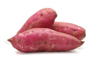 cara menanam ubi jalar dalam karung