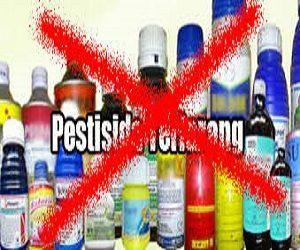 cara mengatasi hama bila pestisida kimia dilarang