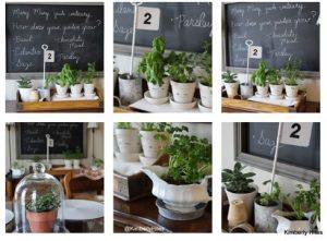 Cara Membuat Taman Bunga Di Kelas Sekolah Yang Sederhana Dan Indah