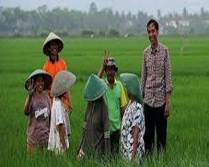 cara agar petani Indonesia lebih sejahtera