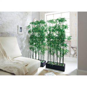 tumbuhan dinding bambu