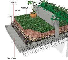Cara Menanam Rumput Di Dak Beton